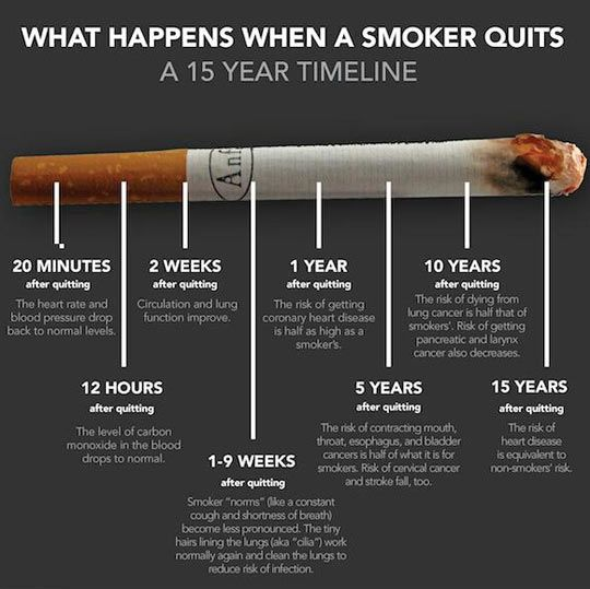 When a smoker quits. How Quitting can help your heart and lower your risks for many different types of cancers.