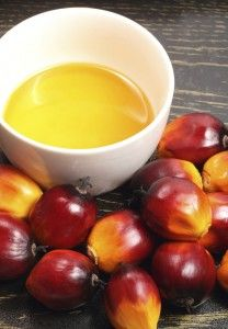 Palm Fruit Oil: The Good, The Bad And The Ugly