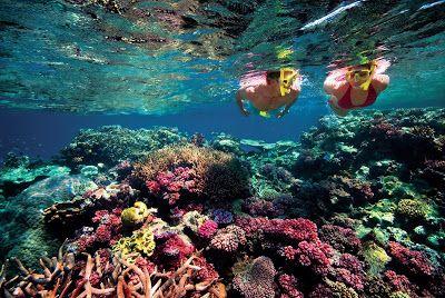 Green Island, off Cairns