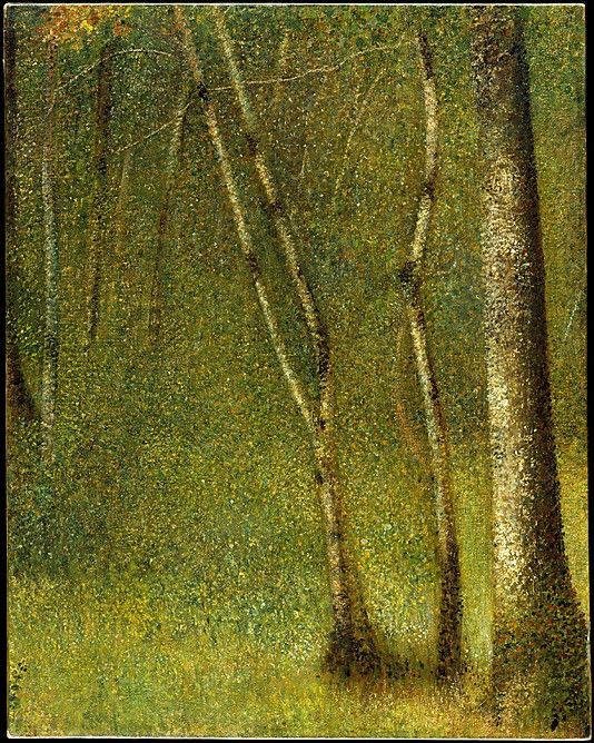 The Forest at Pontaubert / Georges Seurat / 1881 / oil on canvas / at the Met