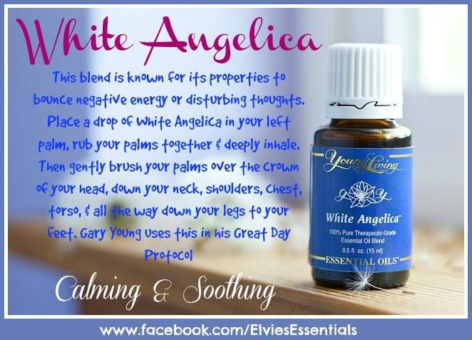 Young Living Essential Oils: White Angelica for Energy & Thoughts