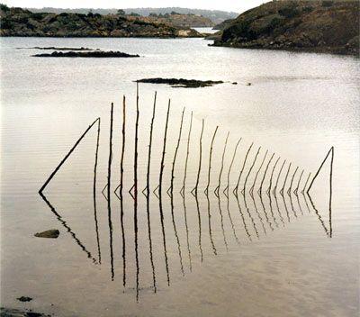 Ultimissime dall'orto: storia di un pesce che poteva nuotare solo controluce #LandArt #fish - by Wolfgang Buntrock