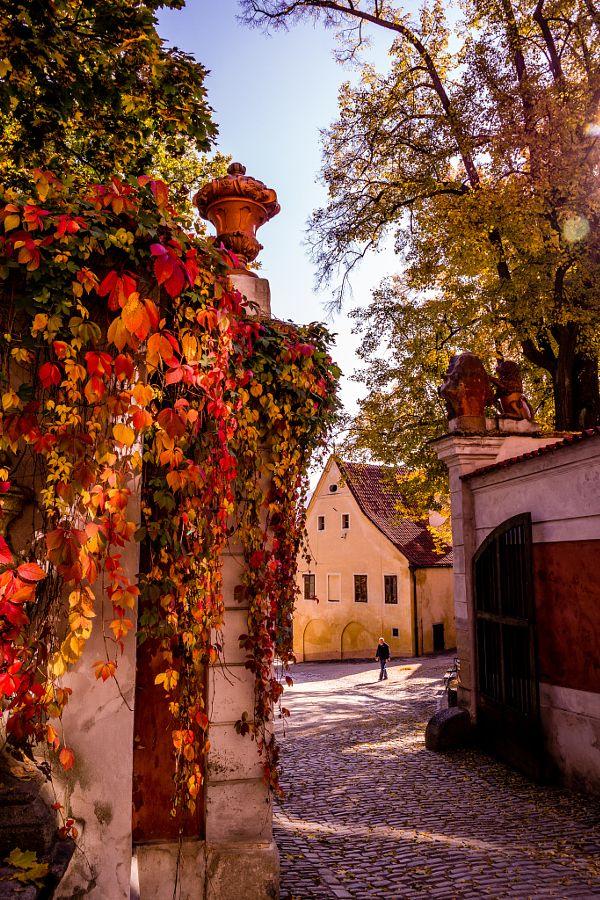 Český Krumlov by Robert Rieger - Photo 143227189 - 500px