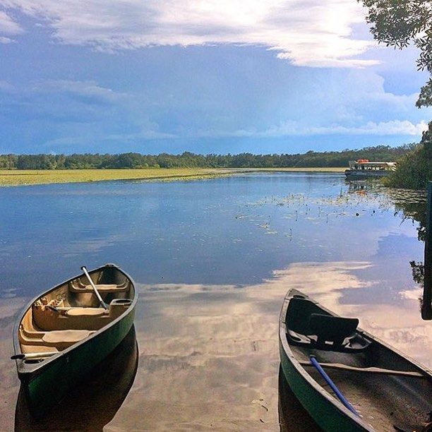 Even an overcast day can't hide the beauty of the Noosa Everglades! Enjoy a cruise to the Noosa Everglades from Noosaville with The Discovery Group and discover an ancient system of waterways and stunning wildlife surrounds.