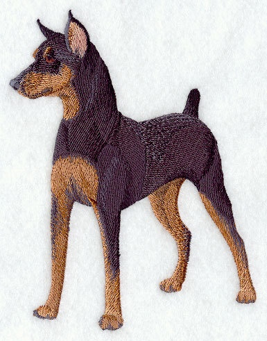 Miniature Pinscher - Embroidered Linen Kitchen - Dog Breed Towel with YOUR CHOICE of Colored Border. $11.99, via Etsy.