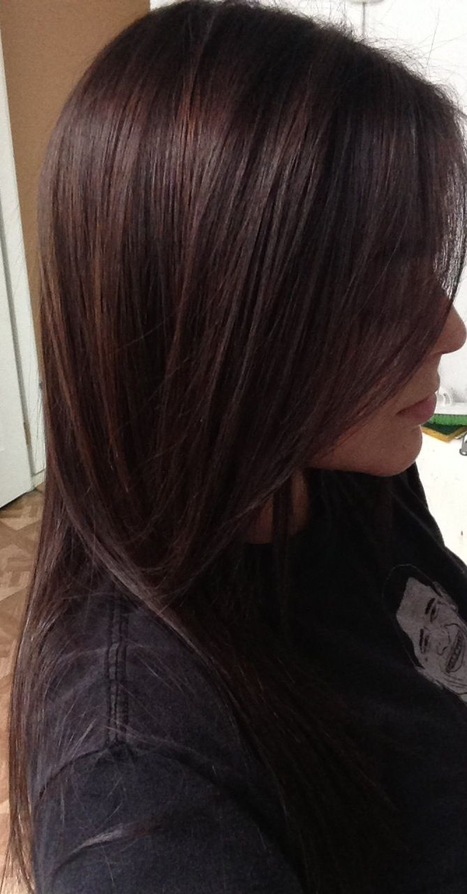 Paul Mitchell PM Shines half 4N half 5N brunette hair color