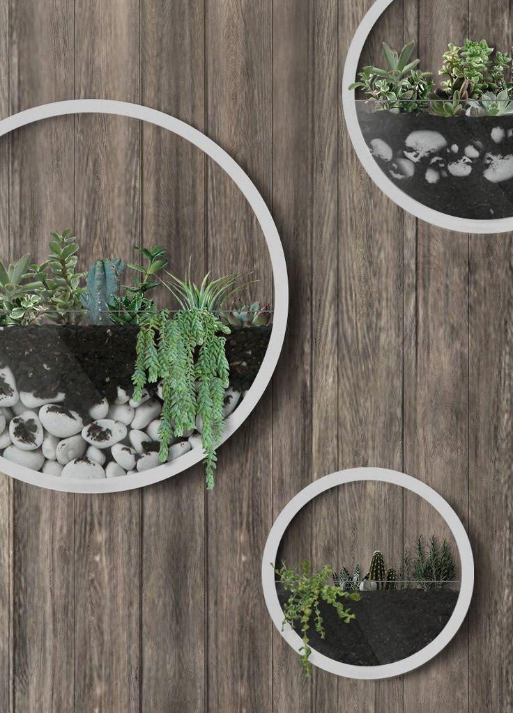 Amazon Com Best M Round Wall Hanging Plant Terrarium Iron 400 x 300