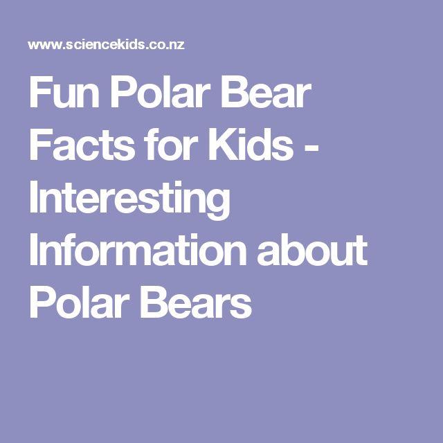 Fun Polar Bear Facts for Kids - Interesting Information about Polar Bears
