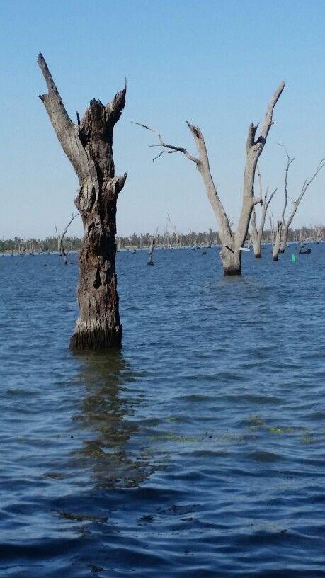 Lake Mulwala New South Wales
