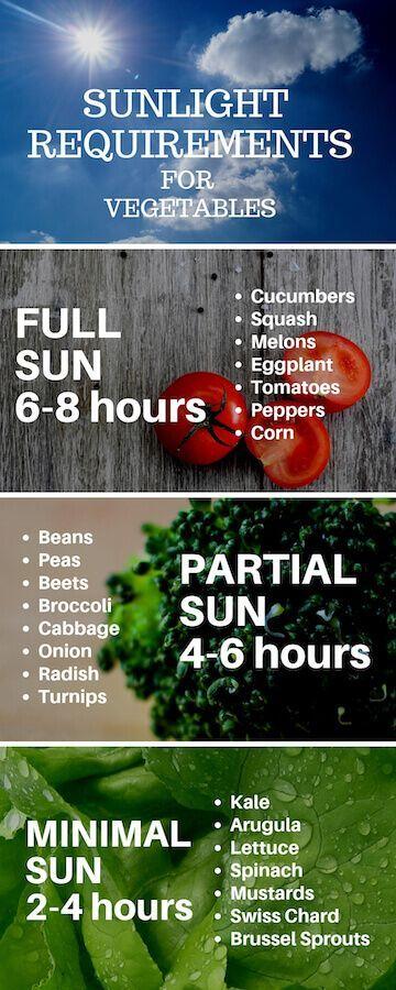 Vorbereiten des Gemüsegartens: So planen Sie den Anbau von Hinterhoflebensmitte… #Garten Deko