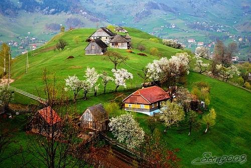 After rain - rustic Carpathian landscape