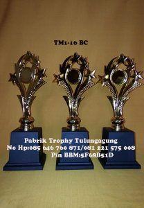 TM1-16BC
