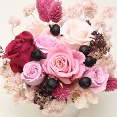プリベリー ザクロ 60個セット:特長 | プリザーブドフラワー花材の通販ならアミファ