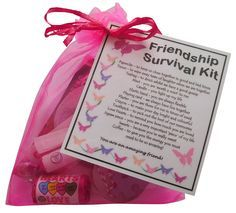 Friendship Survival Kit Gift (Great Friend Gift for Friend's Birthday or Christmas, Ideal BFF gift for BFF, excellent Friendship gift, friend present, present for friend)