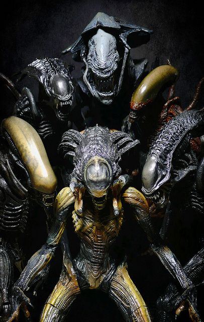 Alien Queen, Classic Alien, Alien Warrior (AVPR), Warrior Alien (Alien Resurrection), Predalien and Praetorian Alien. // Aliens!!! Take 2 - Sweet Xenomorph Family by Jova Cheung, via Flickr