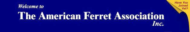 American Ferret Association (AFA)     List of ferret shows :)    Showing ferrets is a lot of fun!