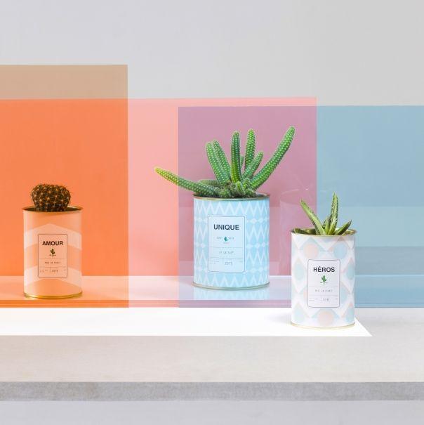 ay cactus personnalis une id e cadeau d nich e par. Black Bedroom Furniture Sets. Home Design Ideas