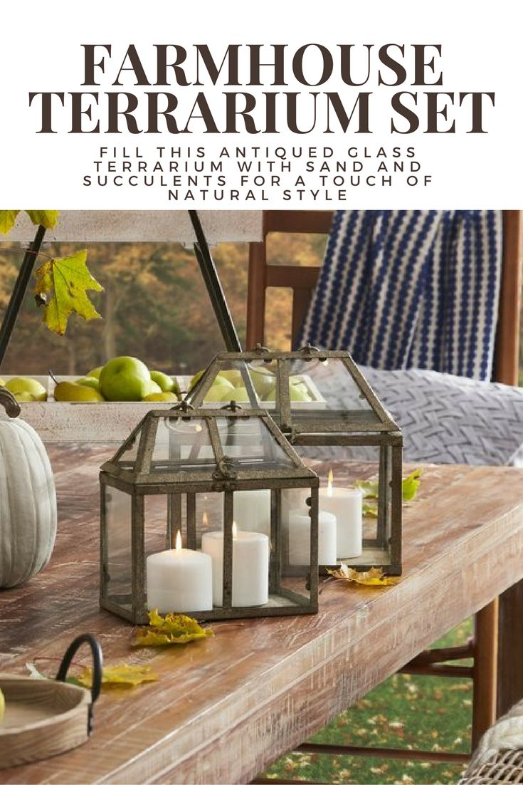 Fill this antiqued glass terrarium with sand and succulents for a touch of natural style #farmhouse #terrarium #candleholder #decor #homedecor #affiliate #antique #natural