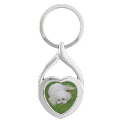 Maltese Poodle Maltipoo Puppy Keychain - dog puppy dogs doggy pup hound love pet best friend