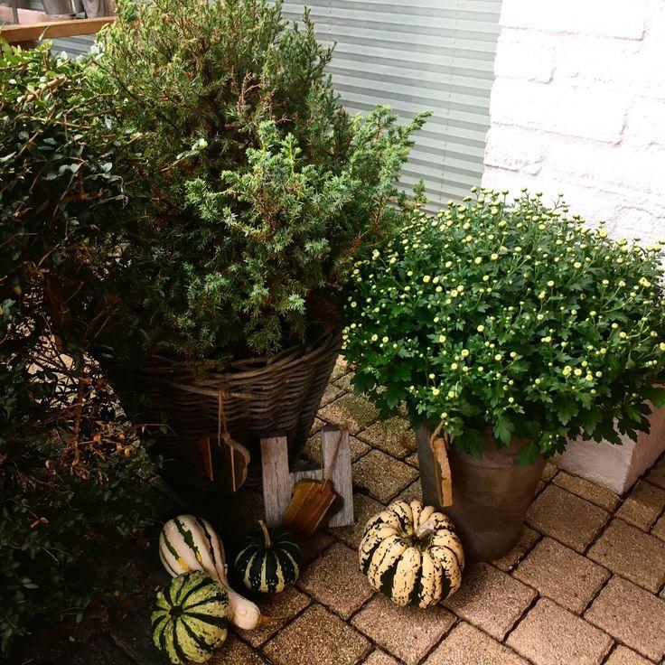 Voordeur herfstdecor / frontdoor falldecor
