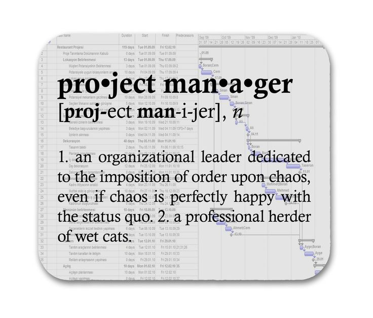Best Technical Project Manager: Project Manager Definition Funny Quote Mouse Pad
