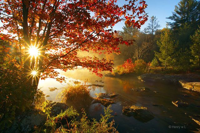 Follaje otoño Ontario