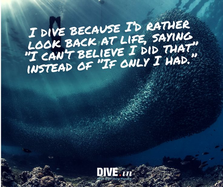Why do you dive?  And the things you see under the water are amazing and you never look at the ocean the same again!!! :-)