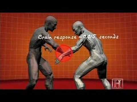 Human Weapon - Krav Maga - 360 Defense - YouTube - this is what got my husband's interest a few years ago. The rest is history.