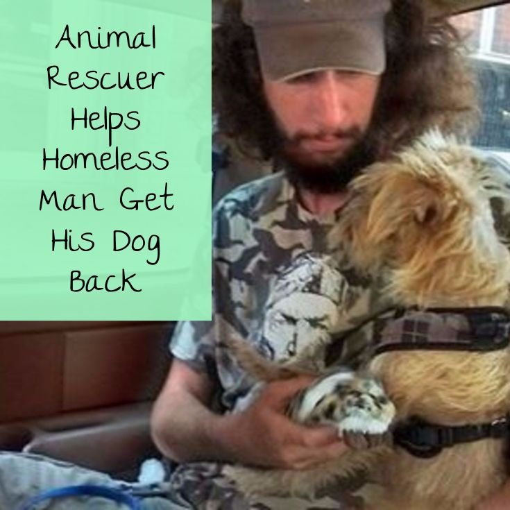 Animal Rescuer Sees Homeless Man's Sign and Has to Help