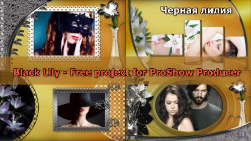 Проект для ProShow Producer - Черная лилия