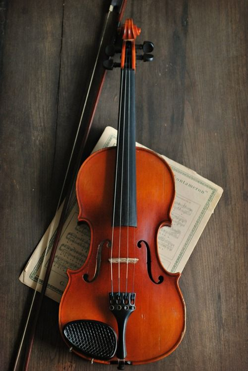 VIOLIN: A stringed instrument played with a bow, having four strings tuned at intervals of a fifth, an unfretted fingerboard, and a shallower body than the viol and capable of great flexibility in range, tone, and dynamics.