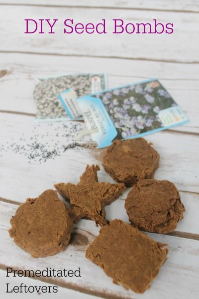 DIY Seed Bombs Tutorial - Use this DIY Seed bomb recipe to make Wildflower Seed Bombs with your kids.