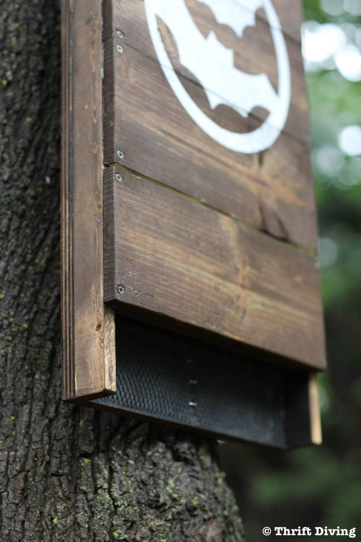 How to build a diy bat house for your backyard and get rid