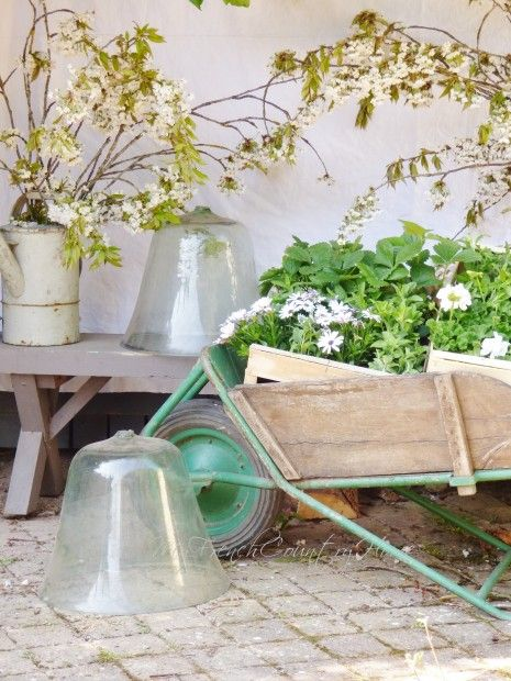 garden vignette with vintage cloches
