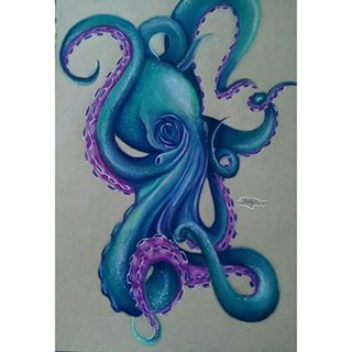 realistic octopus drawing - Google Search
