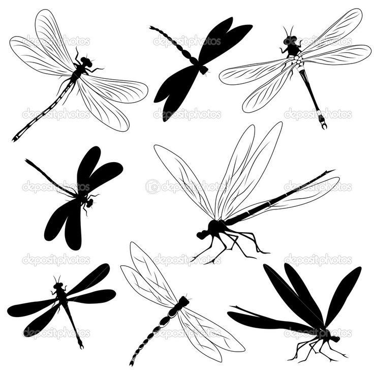 Dragonfly Tattoos On Your Foot | Set of silhouettes of dragonflies, tattoo | Stock Vector © Мария ...