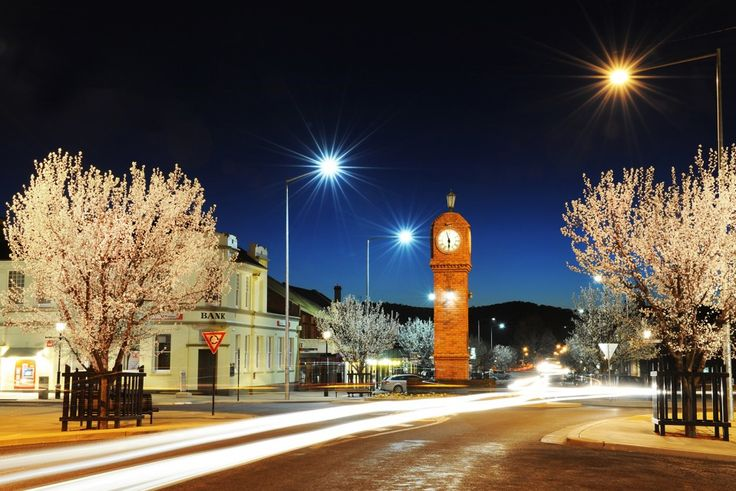 Night Blossoms, Mudgee. By Amber Hooper