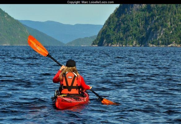 Découverte baleines et nature. Que se soit en observant les mammifères marins sur le fleuve, en quad sur de hauts sommets du Saguenay, en kayak sur le fjord, élément géomorphologique majeur de la région, ou tout simplement en explorant la faune et la flore en forêt, vous repartirez le cœur vibrant de souvenirs inoubliables!