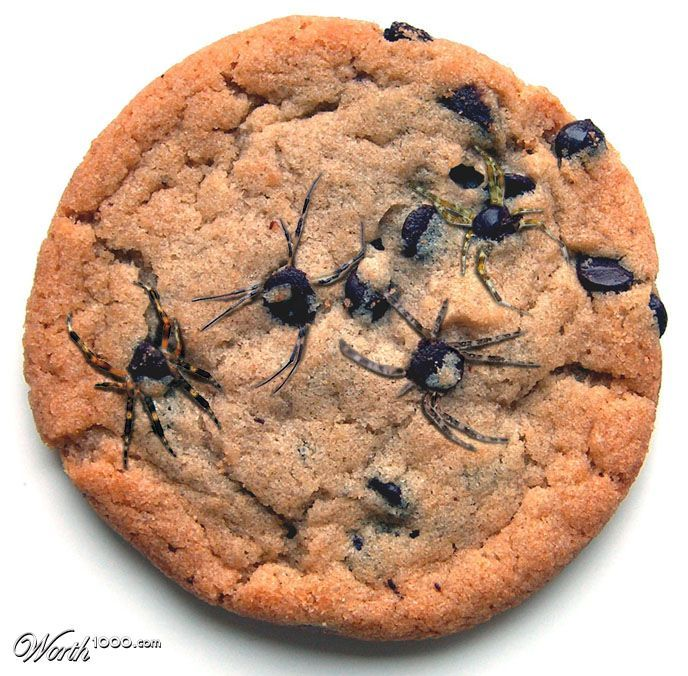 See how to make this cookie with chocolate at iambaker.net!