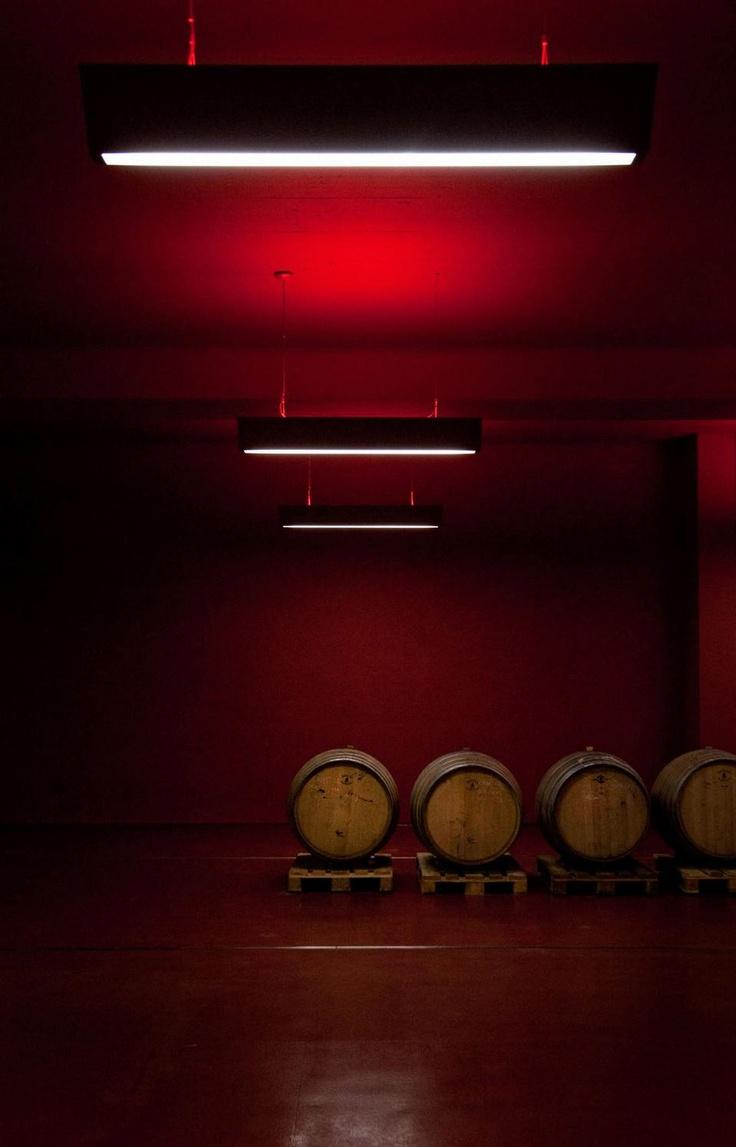 Wine Cellar by Werner Tscholl