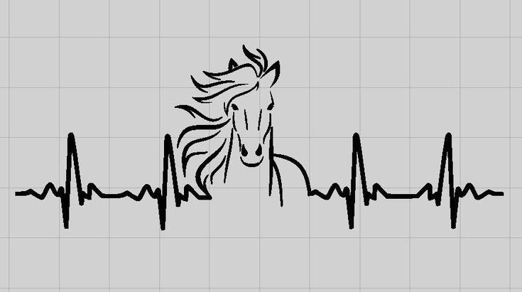 Horse Ekg Vinyl Decal Heartbeat Car Window Decal Mirror Decal Laptop Decal by MichellesVarietyShop on Etsy