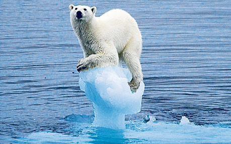 """""""Somos la primera generación que sufre el impacto del cambio climático y la última que aún puede hacer algo"""" (Obama)"""