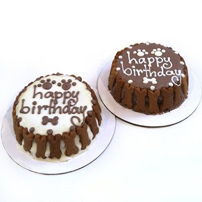 Image result for images of happy cat and dog sending chocolate for birthday