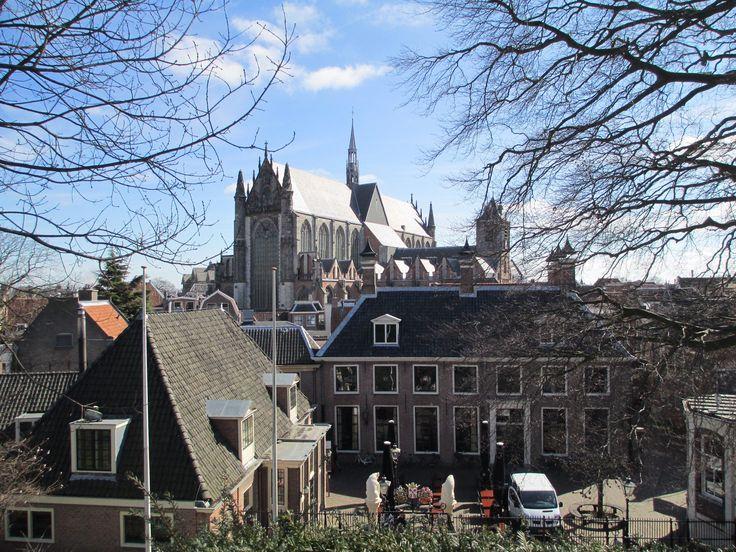 Alena - Netherlands 2