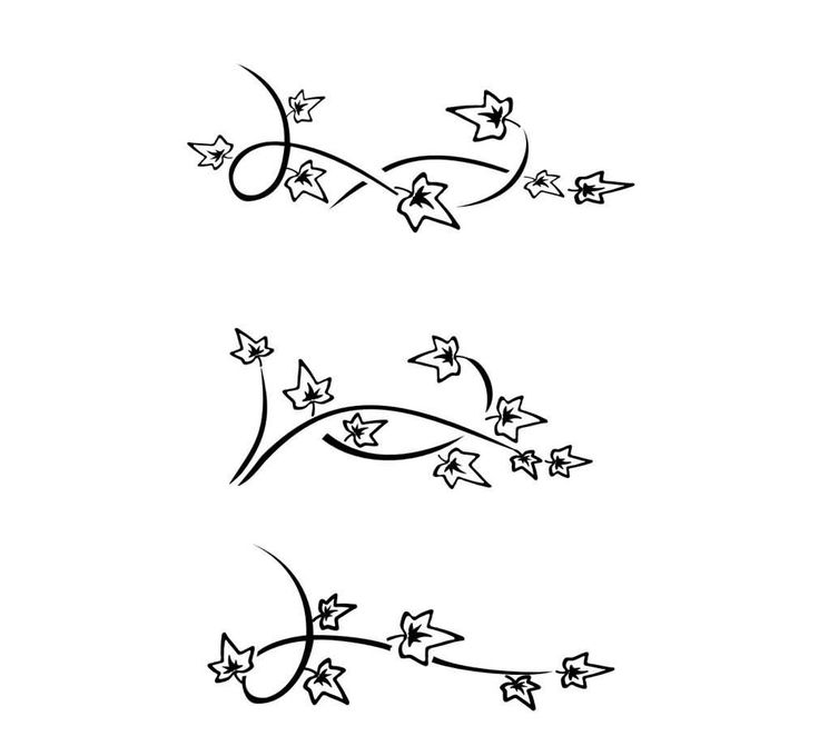 Simple Ivy Vine Drawing 18  latest ivy tattoo designs and ideas