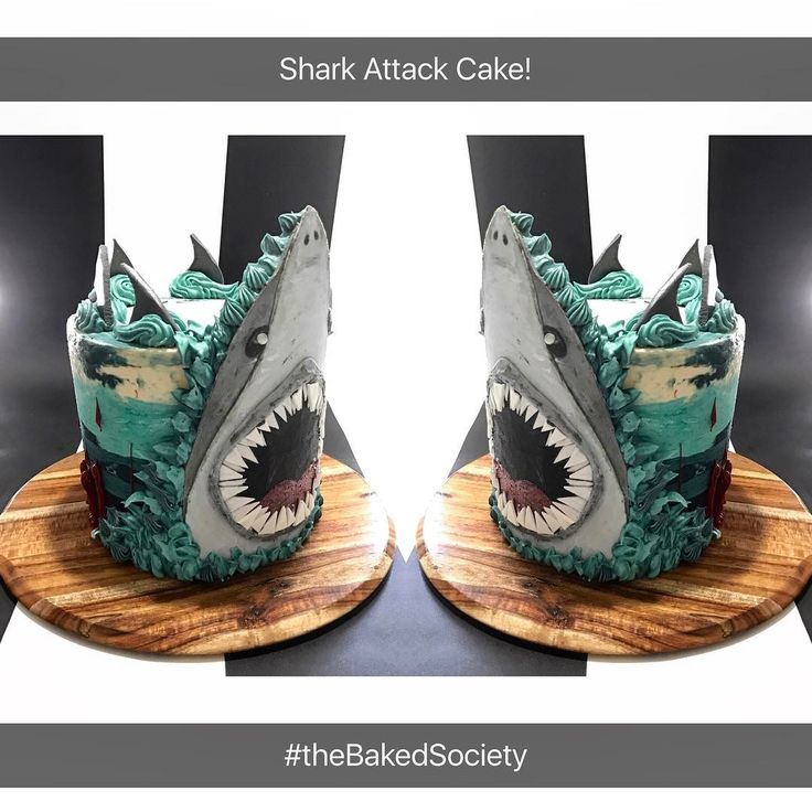 """10 Likes, 1 Comments - The Baked Society (@thebakedsociety) on Instagram: """"Shark Attack! Spiced Apple Cake with Smoked Salted Caramel Swiss Meringue Buttercream. With Hand…"""""""