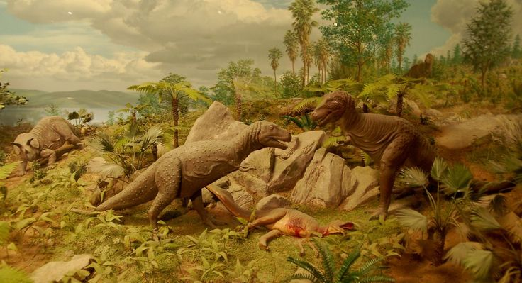 || Cretaceous diorama by Norman Deaton