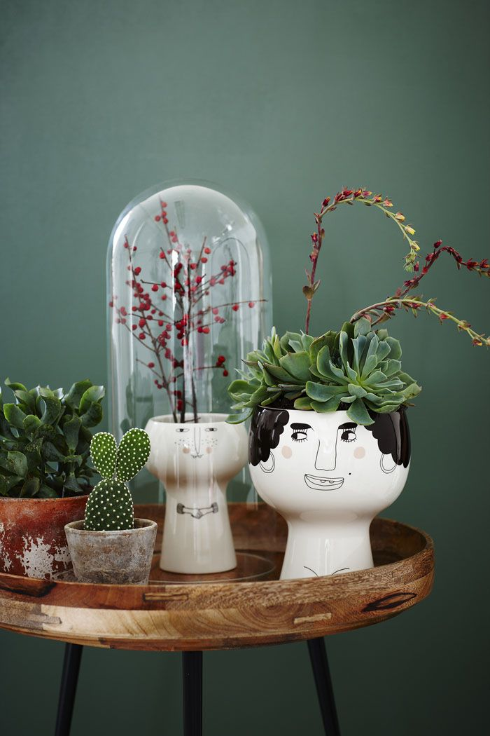 Pots with Personality by Meyer-Lavigne