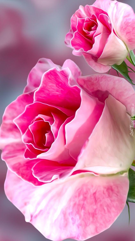 Dwie Roze W Grafice Tapeta Na Telefon Beautiful Roses Flowers Iphone Wallpaper