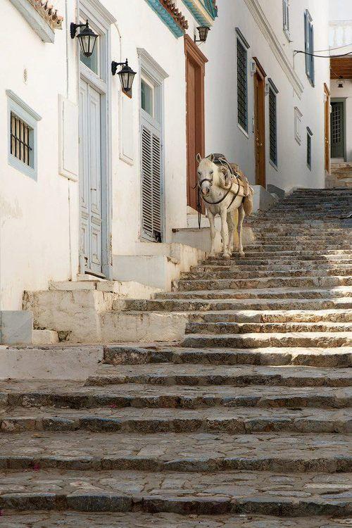 Hydra island #Greece        tBoH
